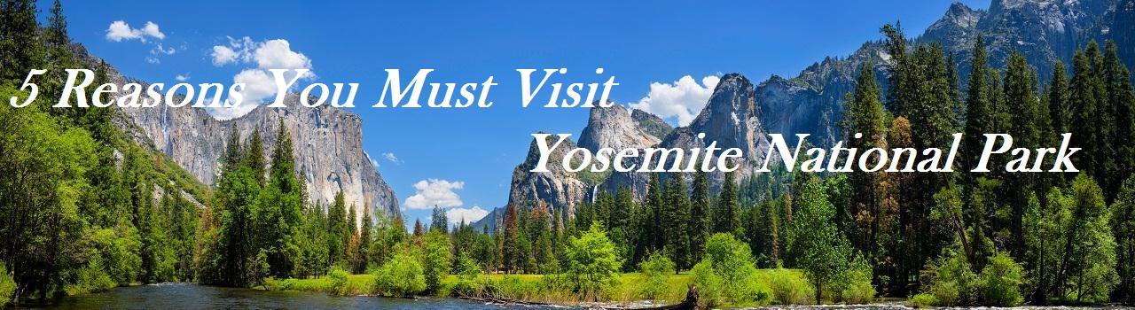 5 Reasons You Must Visit Yosemite National Park