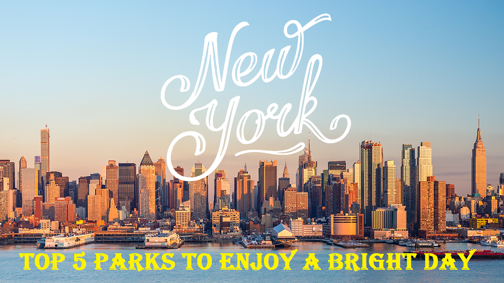 Top 5 Parks to Enjoy a Bright Day in New York