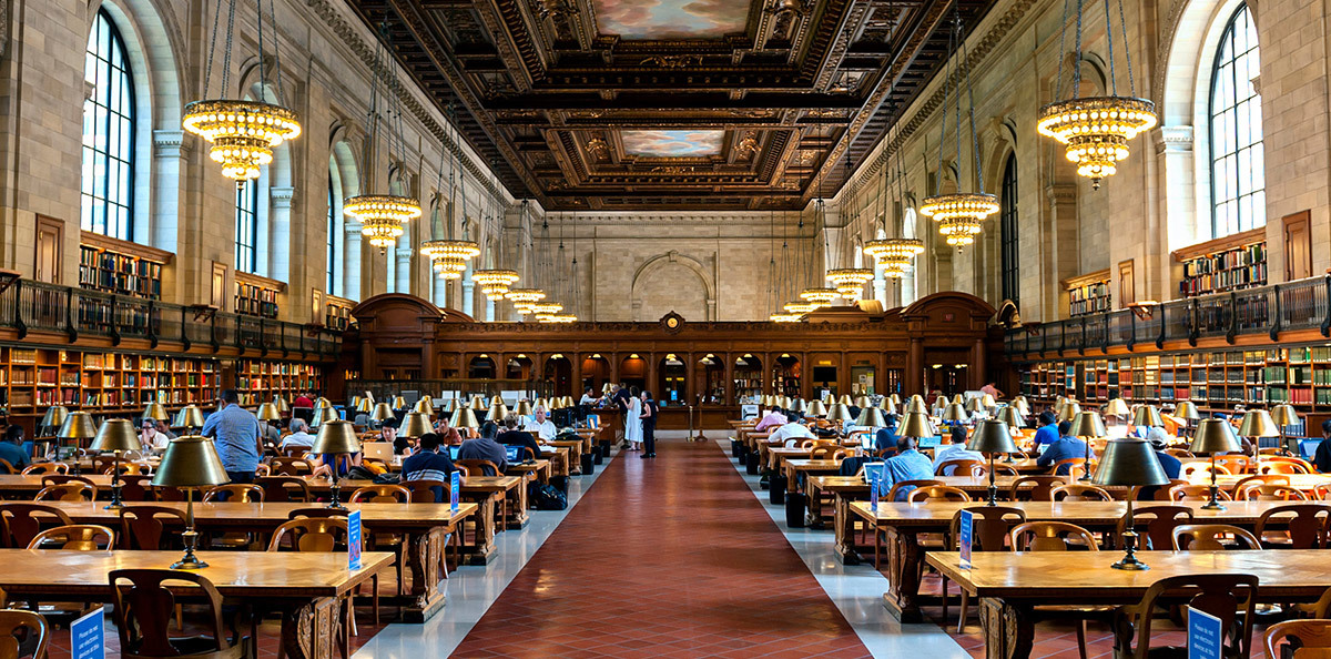 Top 5 New York Libraries for a Quiet Summer Afternoon